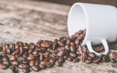 Welcome to Puréfi Coffee Roasters
